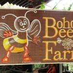 The Bohol Bee Farm