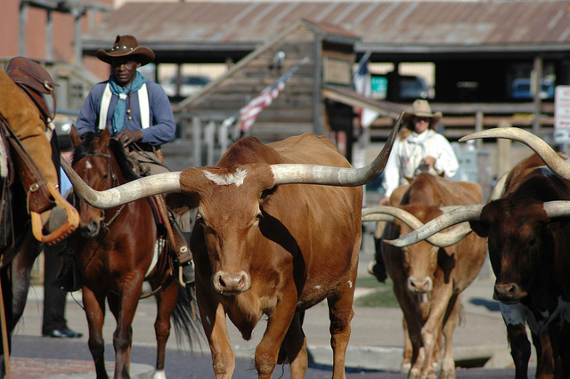 Ft Worth Stockyards Image by Woody Hibbard via Flickr