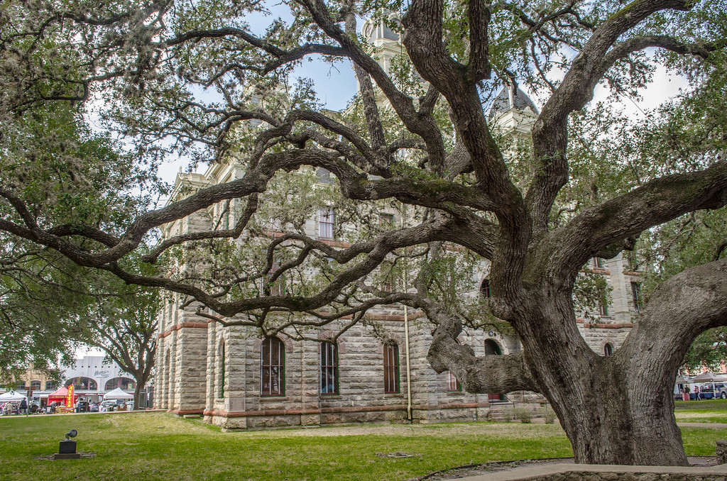 The Hanging Tree, Goliad Texas