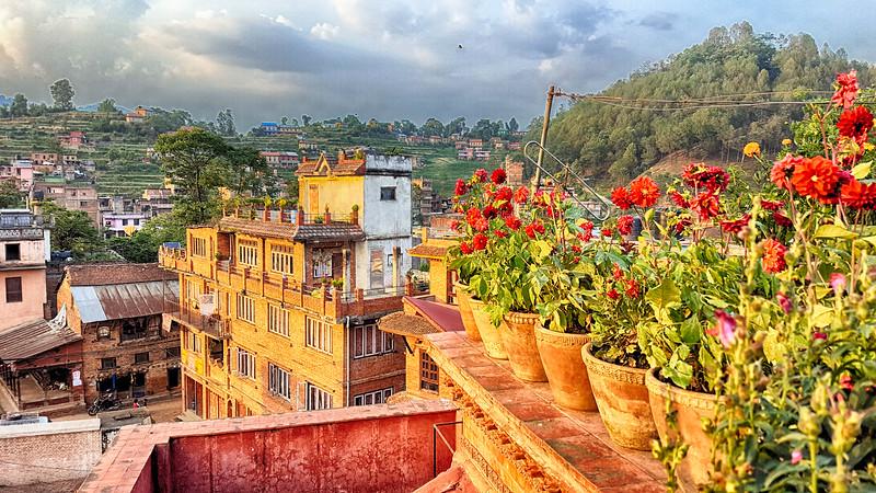 Pinauti Nepal