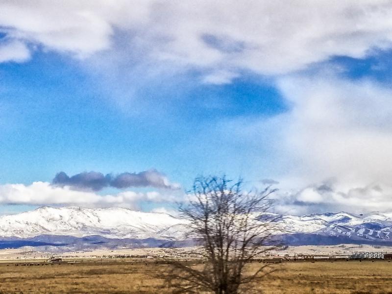 Minden Nevada