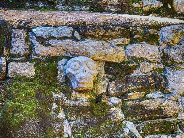 Skull Carving at Coba Mayan Ruins Mexico