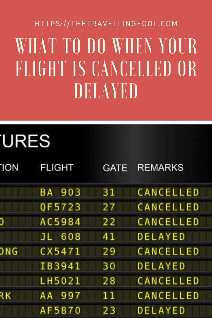 What can you do when your flight is delayed or cancelled? Here are some steps you can take to file a complaint with the airlines.