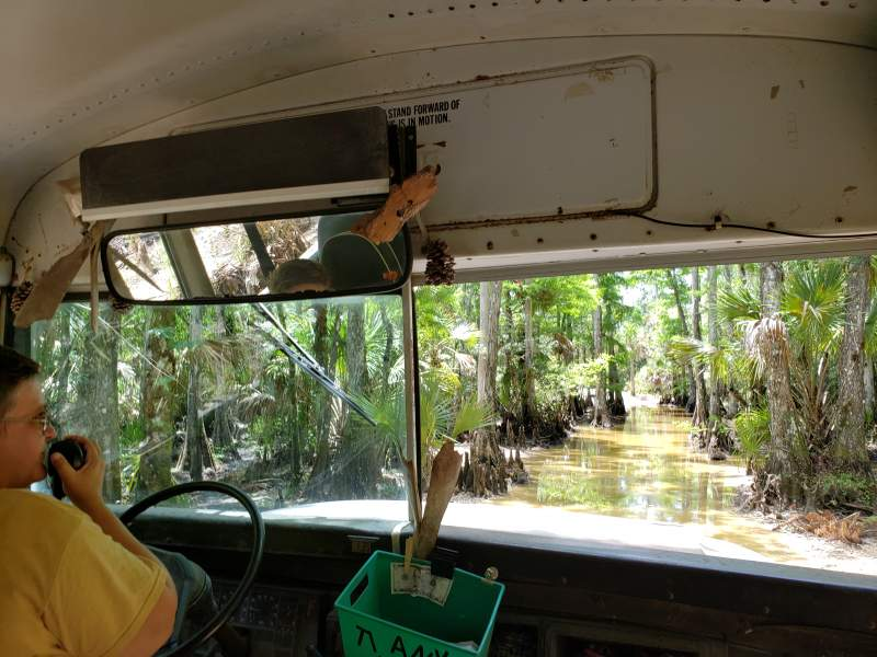 Discovering Authentic Florida with Babcock Ranch Eco Tours
